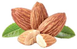 amendoa(2)