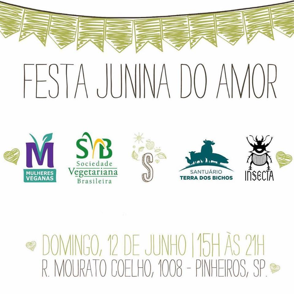 sbv festa junina do amor